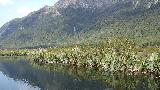 01 - Mirror Lakes on the way to Milford Sound.jpg