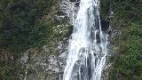 05 - The Lady Bowen Falls, with 161m the higher one of the two permanent waterfalls in Milford Sound.jpg